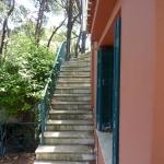 Ανακαίνιση Μονοκατοικίας: Εξωτερικές σκάλες που χρειάζοταν γυάλισμα