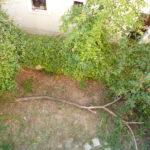 Ανακατασκευή σπιτιού : Δεύτερο Κήπος πριν την ανακατασκευή